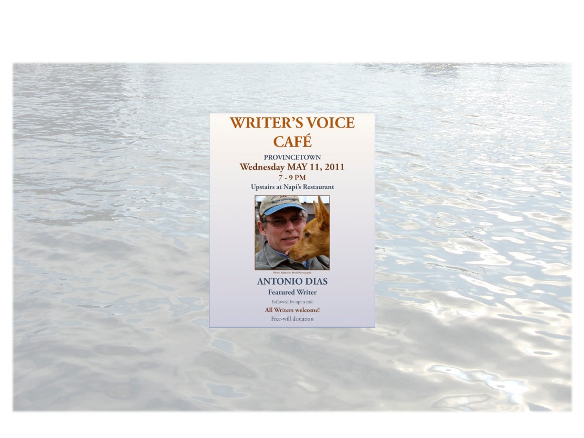 Writer's Voice Cafe Post Features