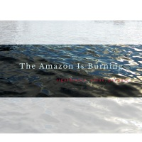 The Amazon Is Burning